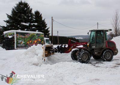 snow-8901