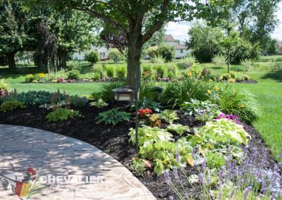 Perennial Garden with Annuals