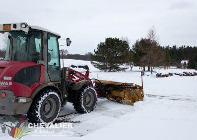 snow-8924