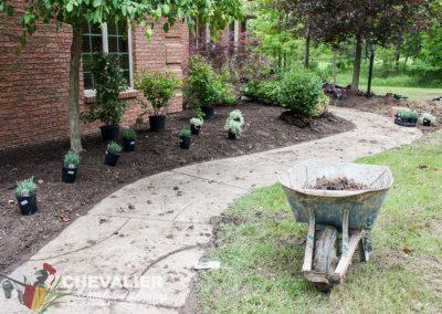 Front Landscape Planting