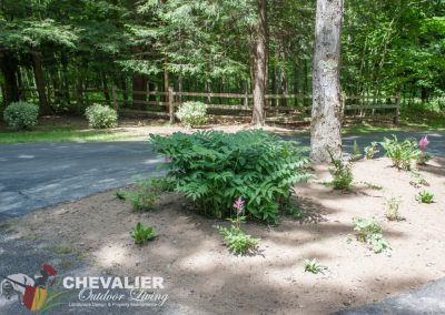 Driveway Island After Planting